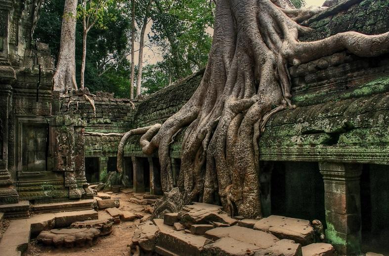 Необычный буддийский монастырь возрастом 1000 лет обнаружен в Индии