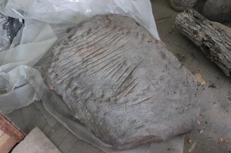 Редкий артефакт выставят в Донецком музее