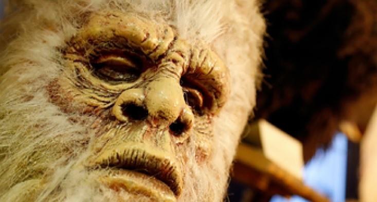 Жителей Канады напугало странное существо, напоминающее снежного человека