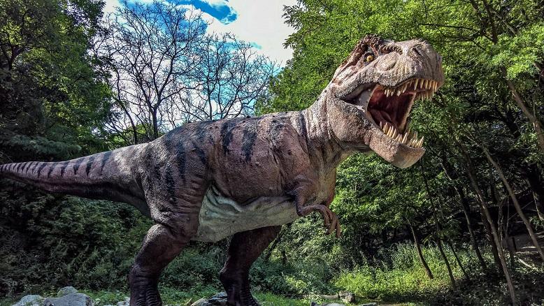 Ученые определили, сколько тираннозавров населяло Землю в древности