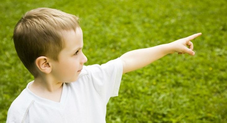 Трехлетний мальчик узнал и осудил своего убийцу в прошлой жизни