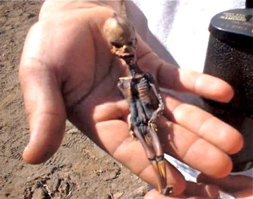 Инопланетянин из пустыни Атакама
