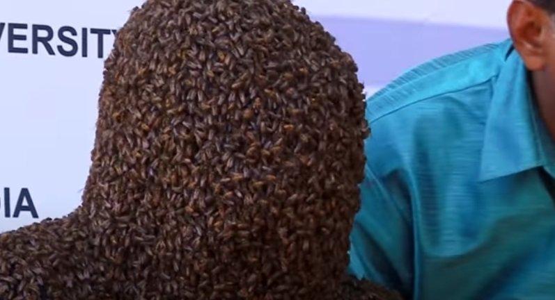 Мужчина посадил себе на лицо 60 тысяч пчел