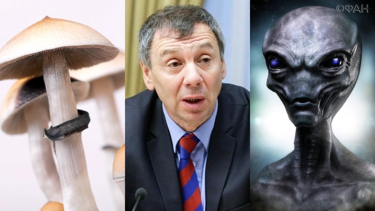 Эксперт допустил существование во Вселенной цивилизаций из грибниц
