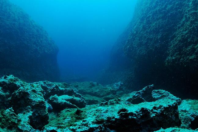 На дне Атлантического океана обнаружили загадочные «геоглифы»