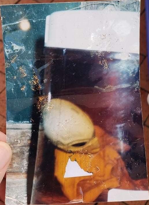 Американец нашел фотографию пришельца