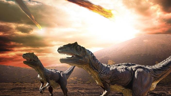 Пять массовых вымираний в истории Земли назвали ученые