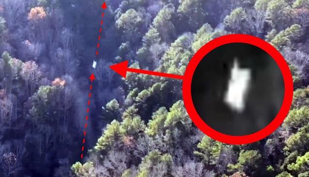 Беспилотник заснял НЛО, вылетающий из лесного массива