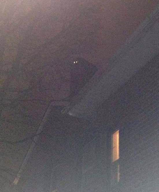 Загадочная фигура со светящимися глазами на крыше дома