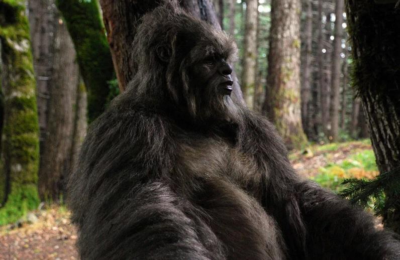 Ученые: Йети – гибрид человека и неизвестного существа