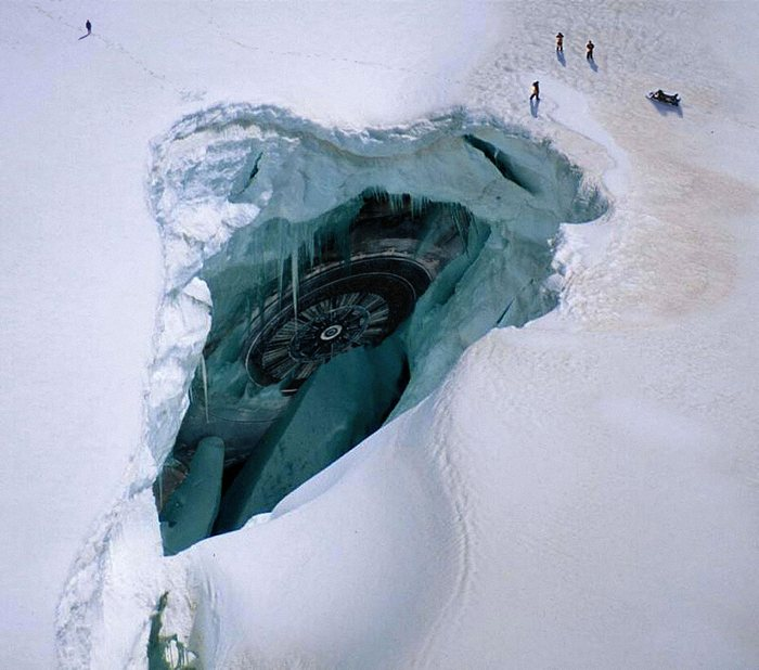 Чудовища Антарктиды - крионы (3 фото)