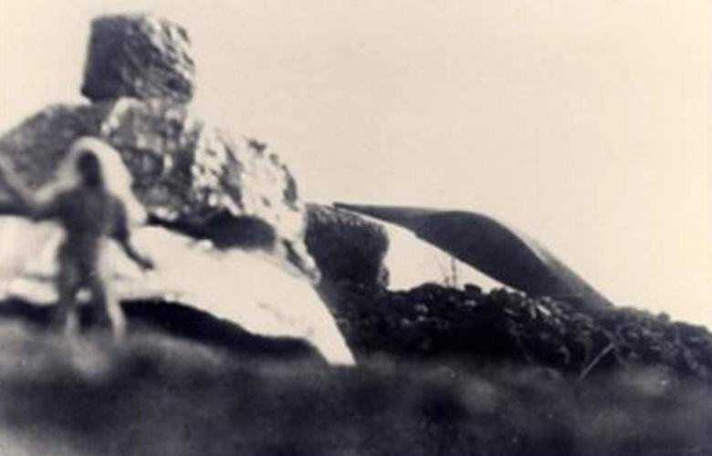 Уфолог опубликовал фотографии пришельцев