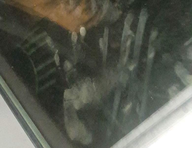 Призрачные отпечатки лица и ладоней появились на машине