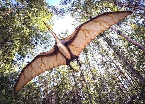 Динозавры, возможно, до сих пор живут в непроходимых джунглях