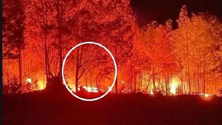 Австралия горит естественным образом – в это мало уже кто верит