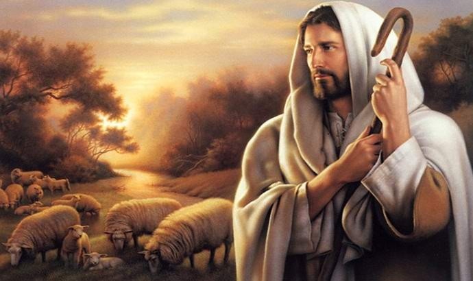 Образ Христа заметили на стволе срубленного дерева