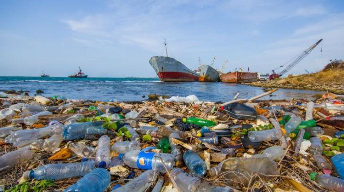 Информация для любителей мусорить, употребляя при этом морепродукты