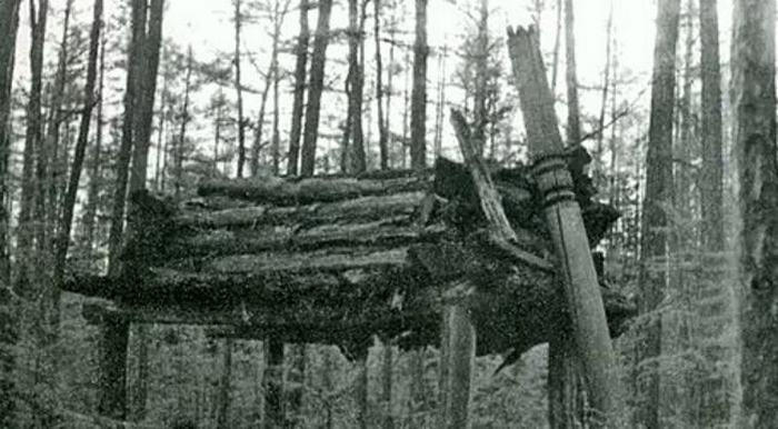 Якутия мистическая: Шаман, даже мертвый, всесилен (8 фото)