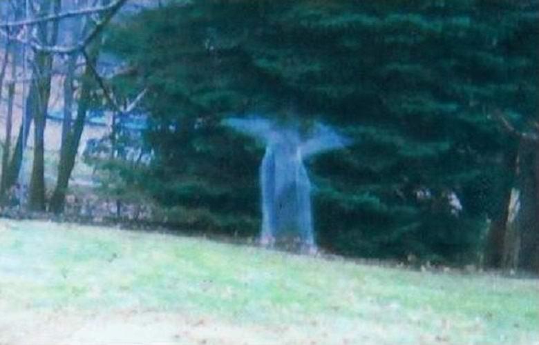 Житель Мичигана утверждает, что его фотоловушка запечатлела ангела