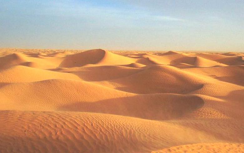 Вокруг нас исключительно всё – живое и мыслящее, даже песчаные дюны