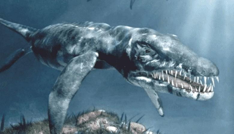 Аргентинский плезиозавр попал на видео рыбаков
