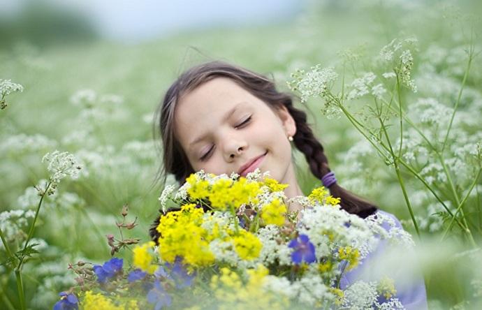 Растения умеют думать, чувствовать и даже заглядывать в будущее (6 фото)
