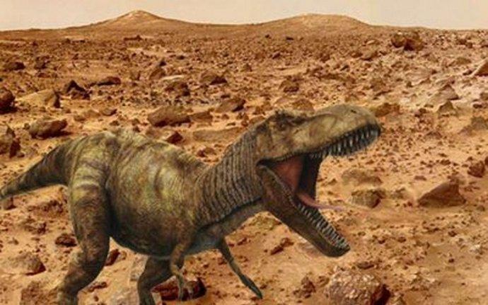 Новые находки марсианских археологов