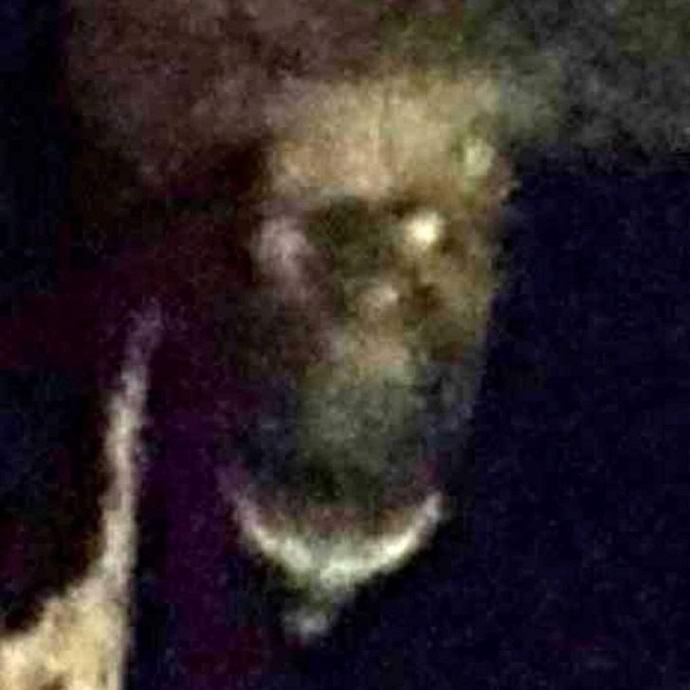 В английском пабе сфотографировали демона (2 фото)