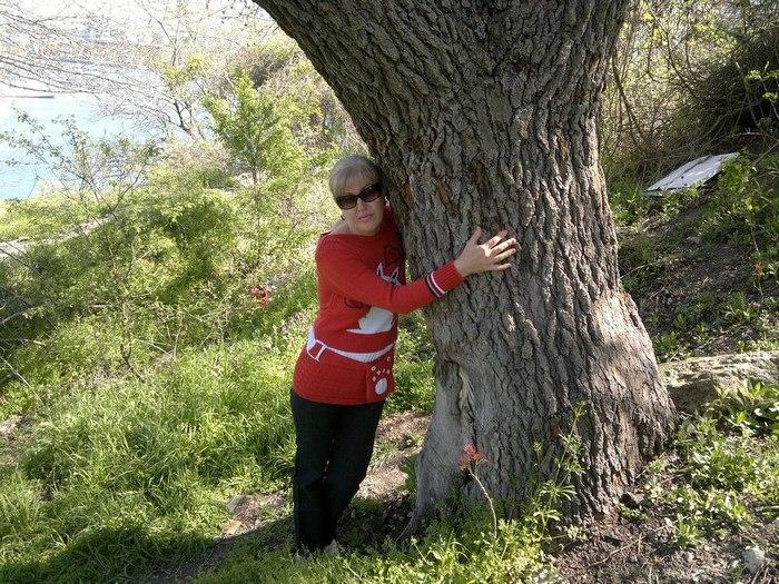 Сообщество разумных деревьев (6 фото)