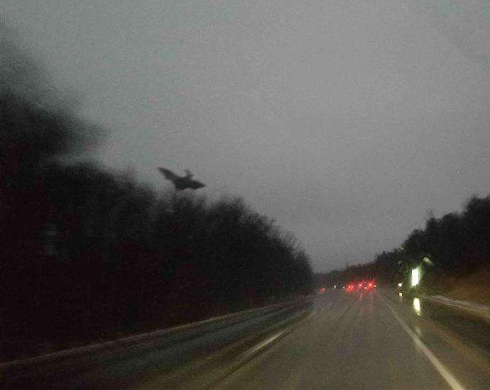 В Пенсильвании сфотографировали Дьявола из Джерси (2 фото)