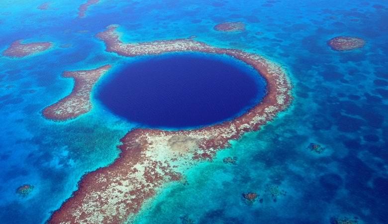 Найден источник загадочных следов на дне Большой голубой дыры, где не может существовать жизнь