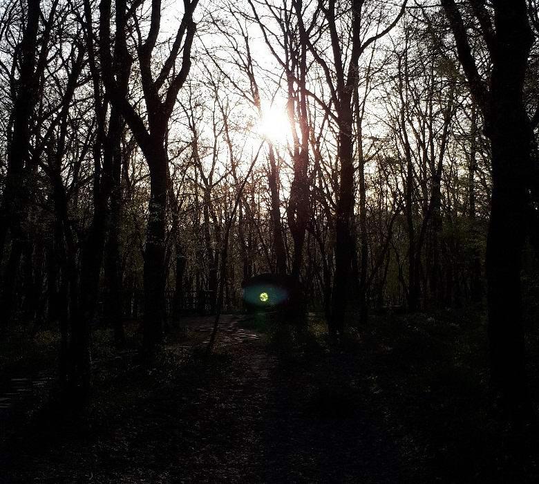 В Краснодарском крае мистически засветился дольмен
