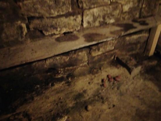 Загадочный погреб Николая Ивановича