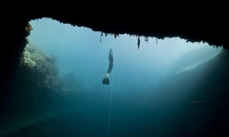 Загадка голубой дыры Дина - морской монстр Луска