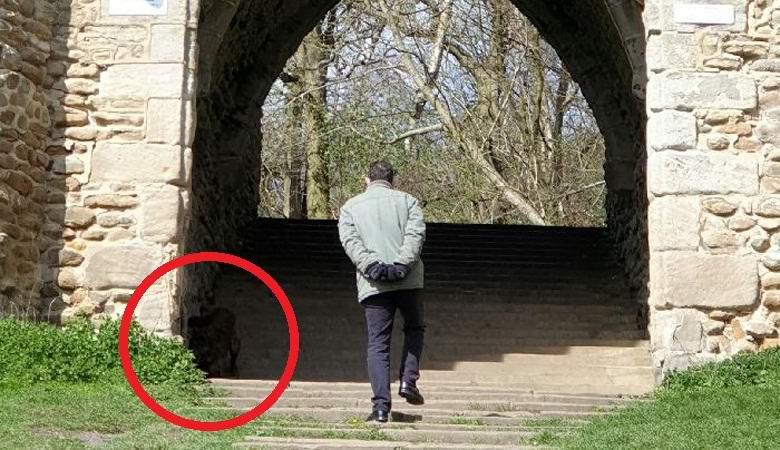 Англичанка запечатлела непонятное существо в парке
