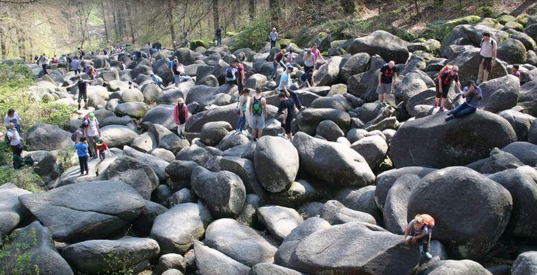 «Каменное море» Германии, которое больше похоже на каменную реку