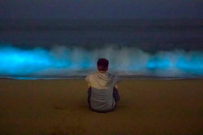 «Неоновые» волны возникли на побережье Южной Калифорнии
