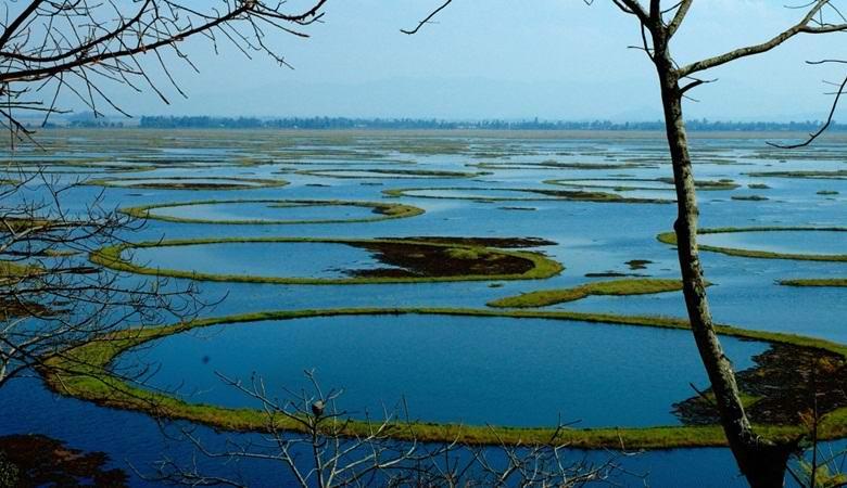 Плавучие острова пхумди озера Локтак