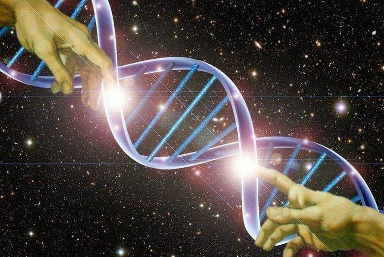 Австралийская исследовательница доказывает, что человеческая ДНК была изменена искусственно