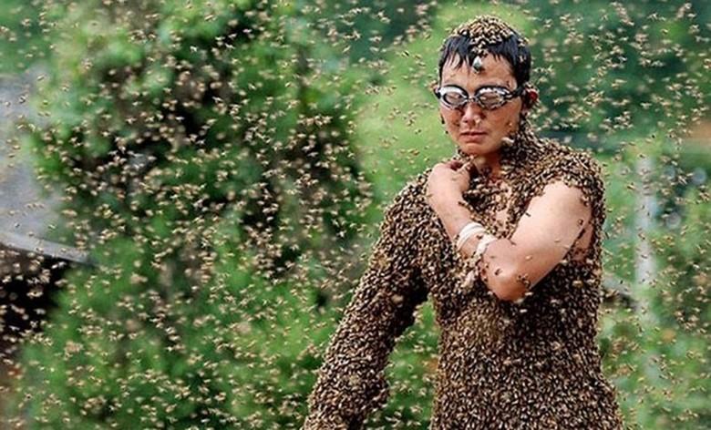 Когда пчелы могут кардинально изменить или даже прервать вашу жизнь
