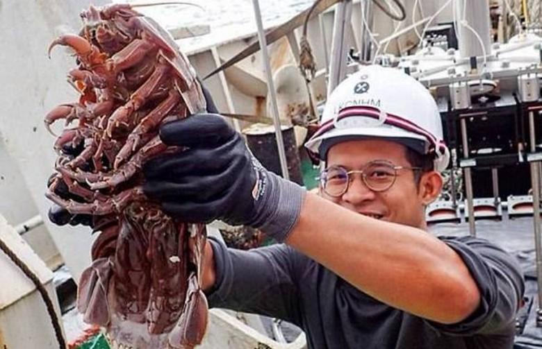 Гигантский подводный таракан найден на дне океана
