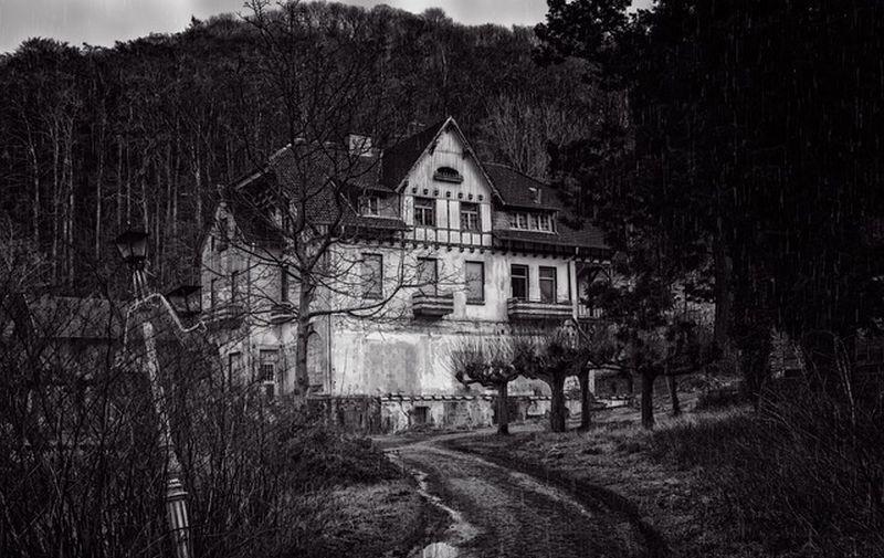 Покупатели поехали смотреть пустой дом и едва не умерли от страха