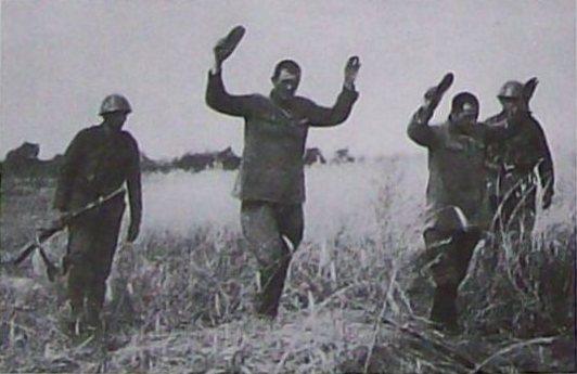 Почему европейские солдаты старались не брать русских в плен