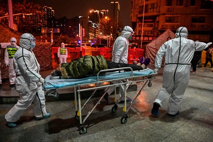 Откуда придет следующая вирусная эпидемия: эколог указал место