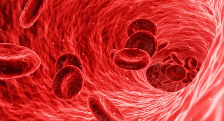 Установлена взаимосвязь между коронавирусом и тромбозом