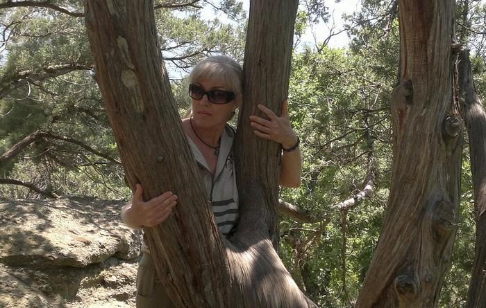 Великие и бесплатные лекари – деревья (7 фото)