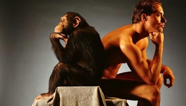 Ученые обнаружили то, что превратило обезьяну в человека