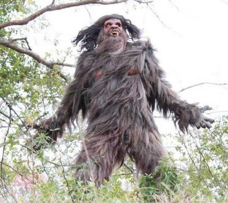 Необычное существо горы Сент-Хеленс – Skookum