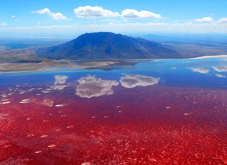 Самое жуткое озеро на Земле находится в Африке