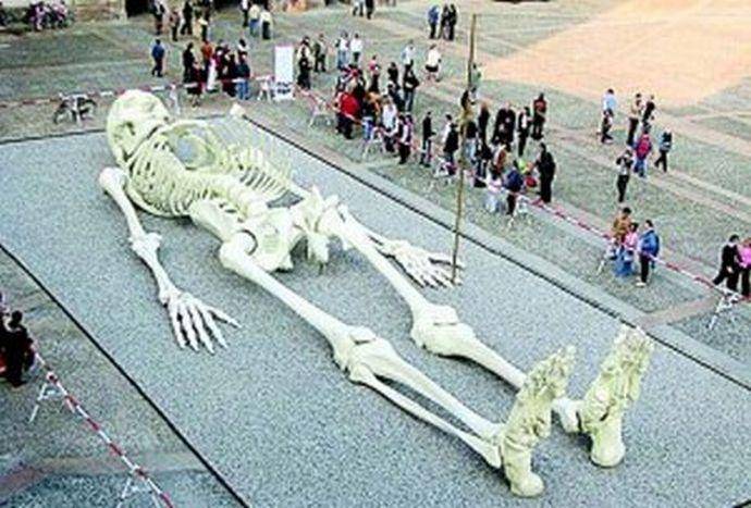 один из найденных в Европе скелетов